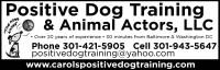 Positive Dog Training & Animal Actors